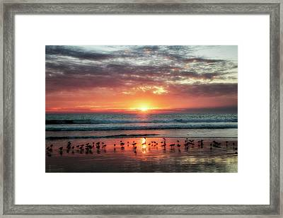 Peaceful Moment Framed Print by Nicki Frates