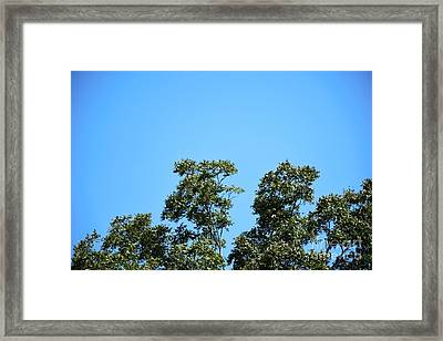 Framed Print featuring the photograph Peaceful Moment by Ray Shrewsberry