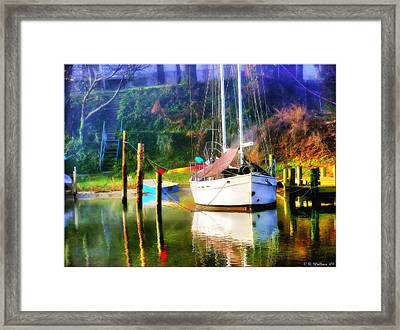Framed Print featuring the photograph Peaceful Morning In The Cove by Brian Wallace