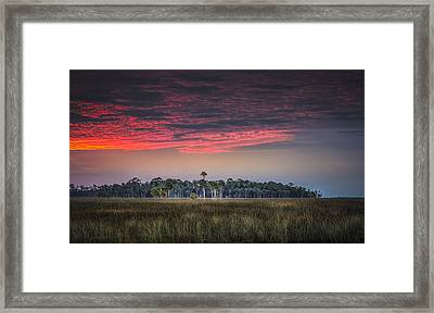 Peaceful Palms Framed Print by Marvin Spates