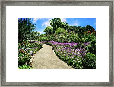 Peaceful Pathway At Huntington Gardens Framed Print by Lynn Bauer