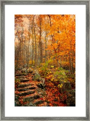 Peaceful Pathway Framed Print by Kathy Jennings