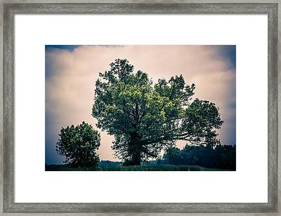 Peaceful Place Along Busy Highway  Framed Print by Off The Beaten Path Photography - Andrew Alexander