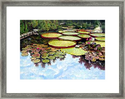 Peaceful Refuge Framed Print by John Lautermilch