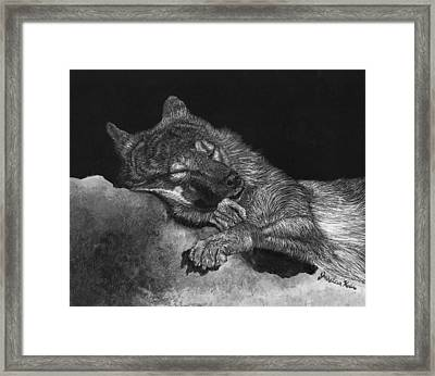 Peaceful Slumber Framed Print by Jessica Kale