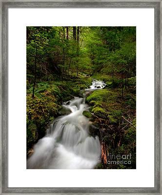 Peaceful Stream Framed Print by Mike Reid