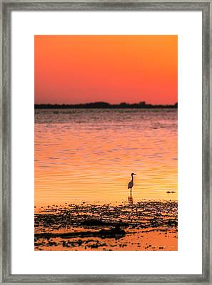 Peaceful Times Framed Print by Marvin Spates