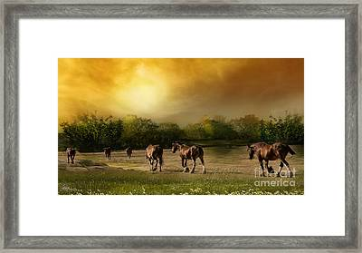 Peaceful Travels Framed Print by Jacque The Muse Photography