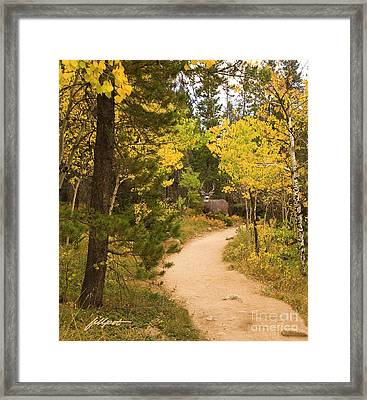 Peaceful Walk Framed Print