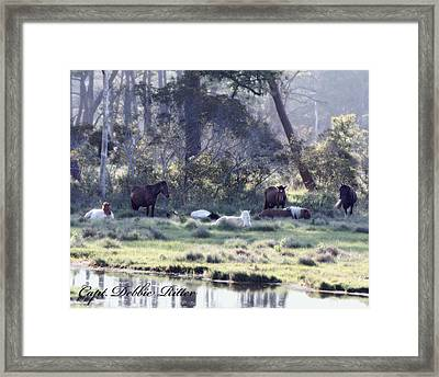 Peaceful Water 2 Framed Print