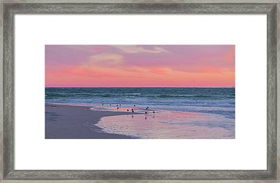 Peaceful Witnesses  Framed Print by Betsy Knapp