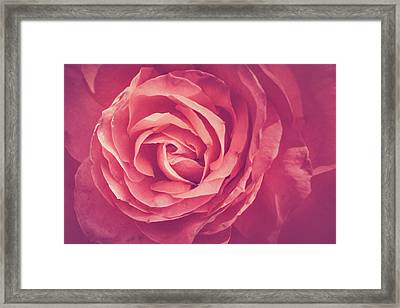 Blooms And Petals Framed Print