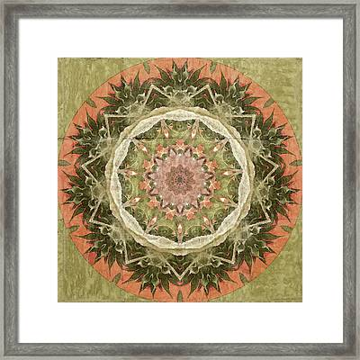 Peach And Sage Abstract Framed Print by Bonnie Bruno