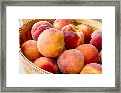 Peach Beauties Framed Print by Teri Virbickis