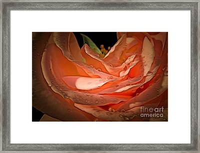 Peach Diamonds Framed Print