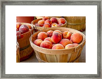 Peach Harvest Framed Print by Teri Virbickis