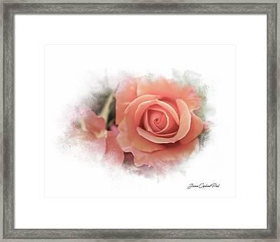 Peach Perfection Framed Print