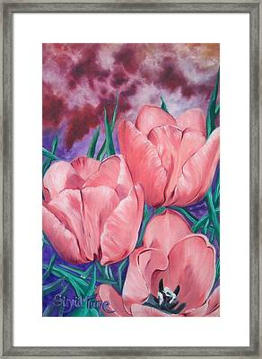 Peach Pink Tulips Framed Print