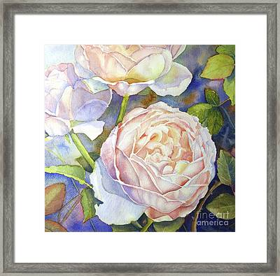 Peach Roses Framed Print