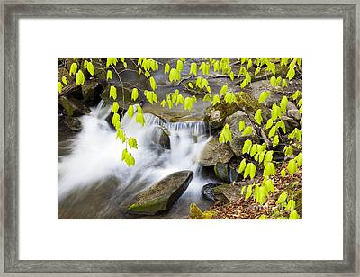 Peacham Brook Spring Framed Print
