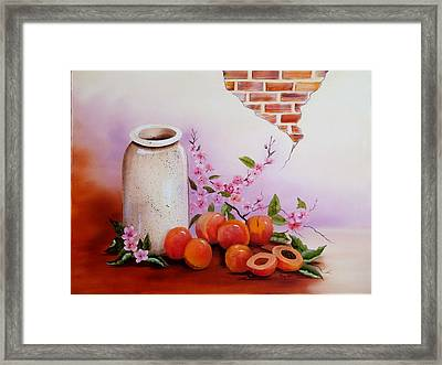 Peaches And Cream Framed Print by Mary Matherne
