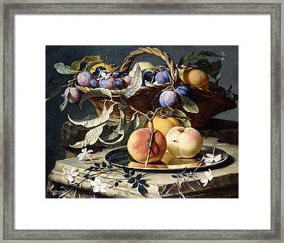 Peaches And Plums In A Wicker Basket, Peaches On A Silver Dish And Narcissi On Stone Plinths Framed Print by Christian Berentz