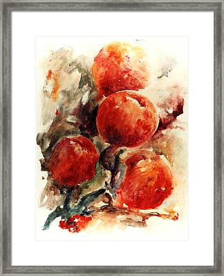 Peaches Framed Print by Rachel Christine Nowicki