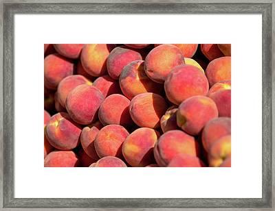 Peachy Peaches Framed Print by Todd Klassy