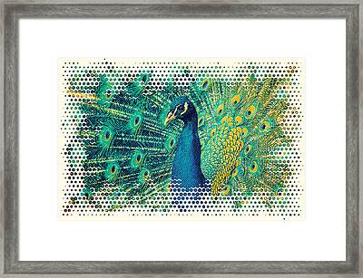 Peacock Art Framed Print by Angela Doelling AD DESIGN Photo and PhotoArt