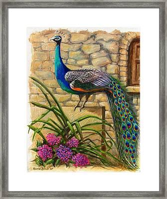 Peacock At Evangelistria Framed Print by Yvonne Ayoub