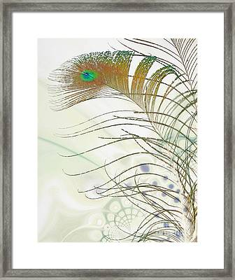Peacock Feather Framed Print by Jan Piller