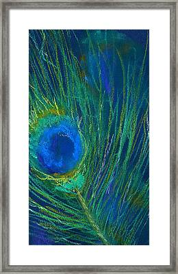 Peacock Feather Framed Print by Marilyn Barton
