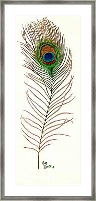 Peacock Feather Framed Print by Mary Rogers