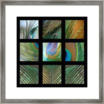 Peacock Feather Mosaic Framed Print