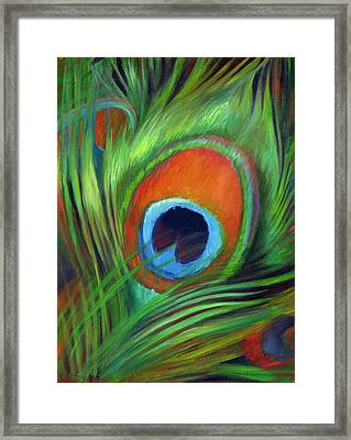Peacock Feather Framed Print by Nancy Tilles