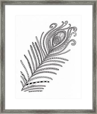 Peacock Feather Framed Print by Paula Dickerhoff