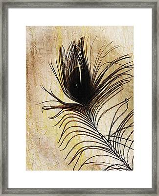 Peacock Feather Silhouette Framed Print by Sarah Loft