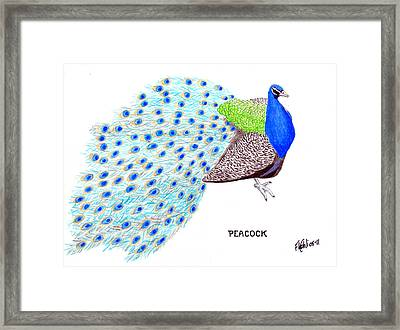 Peacock Framed Print by Frederic Kohli