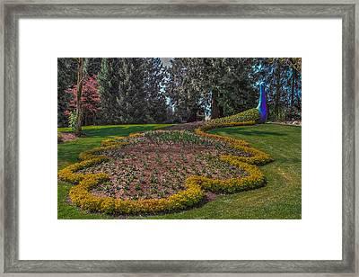 Peacock Garden Framed Print by Eti Reid
