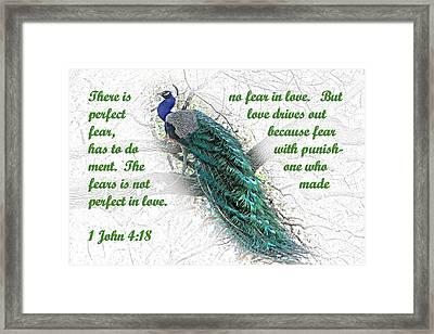 Peacock In Tree 1john 4 V 18 Framed Print by Linda Phelps