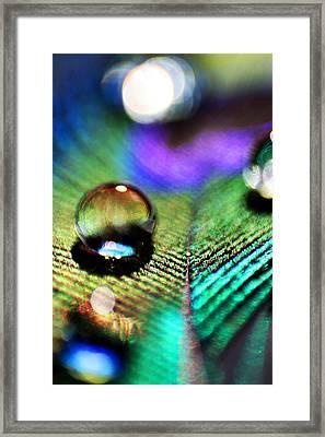 Peacock Jewel Framed Print