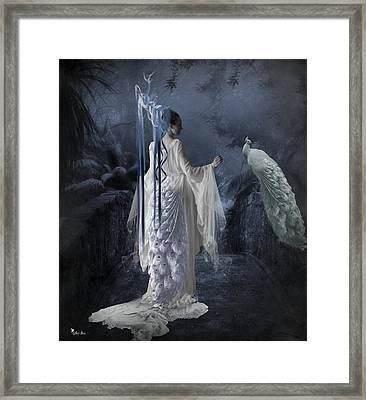 Peacock Lady Framed Print