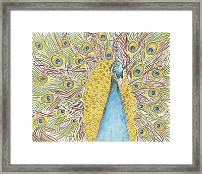 Framed Print featuring the drawing Peacock One by Arlene Crafton