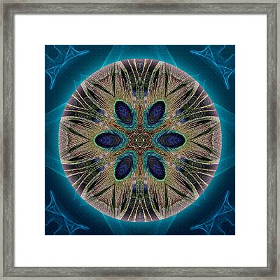 Peacock Power Framed Print