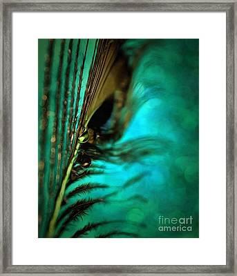 Peacock Pride Framed Print by Krissy Katsimbras