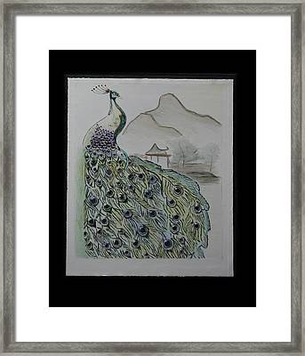 Peacock Framed Print by Robin Lee