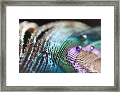 Framed Print featuring the photograph Peacock Swirls by Angela Murdock