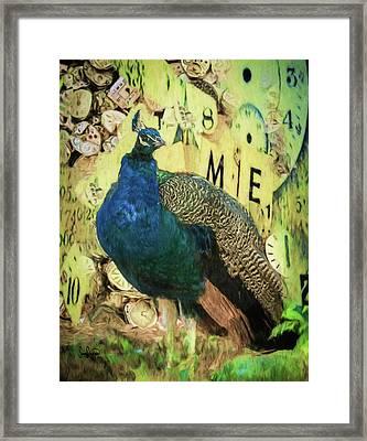 Peacock Time Framed Print