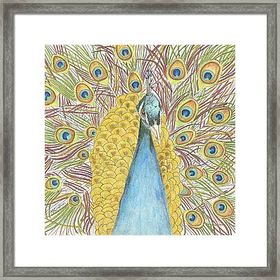 Framed Print featuring the drawing Peacock Two by Arlene Crafton