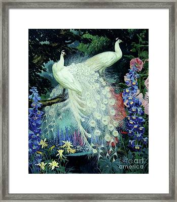 Peacocks And Hollyhocks Framed Print by Pg Reproductions